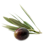 Olive Refined - Vegetable, Carrier, Emollients & other Oils