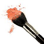 Blush or Bronzer Brush