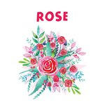 20 LT Face Cream - Rose Range Skincare