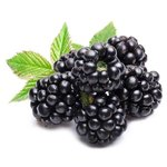 1 kg Blackberry Powder - Fruit & Herbal Powder Extracts